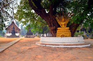 Krásny zastrčený chrám