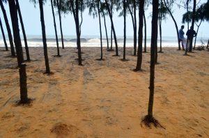Keralské pláže
