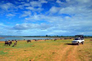V období dažďov sa v týchto miestach nedá jazdiť, pretože jazero výrazne zväčší svoju rozlohu.